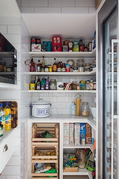 Woodlands pantry concept with built-in fridge